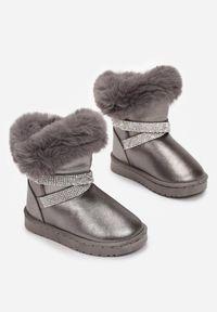 Born2be - Srebrne Śniegowce Jynrelle. Wysokość cholewki: za kostkę. Nosek buta: okrągły. Zapięcie: bez zapięcia. Kolor: srebrny. Materiał: futro, materiał. Szerokość cholewki: normalna. Wzór: aplikacja