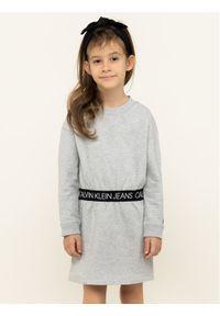 Szara sukienka Calvin Klein Jeans na co dzień, casualowa, prosta