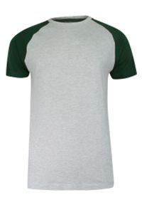 Brave Soul - T-shirt Szaro-Zielony Bawełniany, Krótki Rękaw Raglanowy, Dwukolorowy, Męski -BRAVE SOUL. Okazja: na co dzień. Kolor: zielony, wielokolorowy, szary. Materiał: bawełna, wiskoza. Długość rękawa: krótki rękaw. Długość: krótkie. Sezon: lato, wiosna. Styl: casual