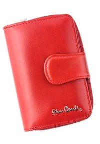 Portfel damski Pierre Cardin 01 LINE 115 CZERWONY. Kolor: czerwony. Materiał: skóra. Wzór: gładki