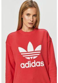 Różowa bluza adidas Originals casualowa, z długim rękawem, długa, bez kaptura