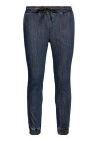 Niebieskie jeansy Diamante Wear