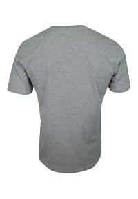 Pako Jeans - T-shirt Popielaty, 100% BAWEŁNA, U-neck, bez Nadruku, Męski, Krótki Rękaw -PAKO JEANS. Okazja: na co dzień. Kolor: szary. Materiał: bawełna. Długość rękawa: krótki rękaw. Długość: krótkie. Styl: casual