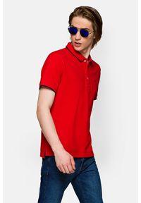 Lancerto - Koszulka Czerwona Polo Dominic. Typ kołnierza: polo. Kolor: czerwony. Materiał: włókno, tkanina, materiał, bawełna. Długość rękawa: krótki rękaw. Wzór: ze splotem. Styl: klasyczny