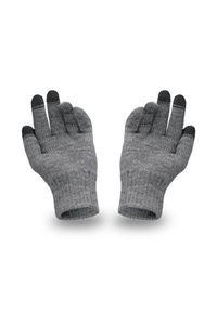 Rękawiczki męskie PaMaMi - Szary. Kolor: szary. Materiał: akryl. Sezon: zima