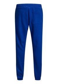 Jack & Jones - Jack&Jones Spodnie dresowe Elias 12195676 Niebieski Comfort Fit. Kolor: niebieski. Materiał: dresówka