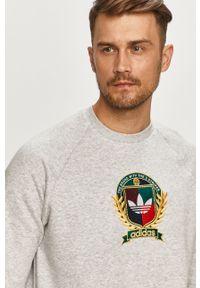 Szara bluza nierozpinana adidas Originals bez kaptura, casualowa, z nadrukiem