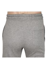 Szare spodnie Pako Jeans casualowe, na lato