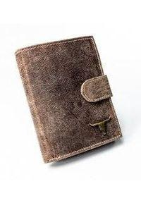 BUFFALO WILD - Portfel męski brązowy Buffalo Wild RM-04L-BAW-9947 BROW. Kolor: brązowy. Materiał: skóra