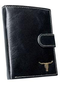 BUFFALO WILD - Portfel męski czarny Buffalo Wild RM-04L-BAW 2 BLACK. Kolor: czarny. Materiał: skóra