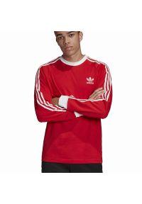 Bluza Adidas długa, klasyczna, z długim rękawem, z aplikacjami