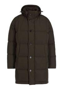 Zielona kurtka zimowa Pierre Cardin