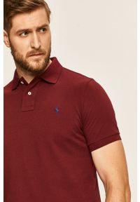 Brązowa koszulka polo Polo Ralph Lauren krótka, polo, na co dzień