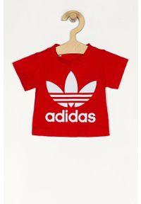 Czerwona bluzka z krótkim rękawem adidas Originals na co dzień, casualowa, z nadrukiem