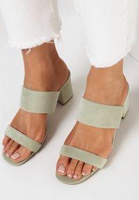 Born2be - Miętowe Klapki Oriphithoe. Nosek buta: okrągły. Kolor: miętowy. Materiał: bawełna. Wzór: gładki, paski. Obcas: na słupku