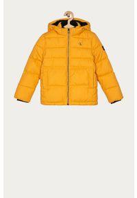 Żółta kurtka Calvin Klein Jeans casualowa, na co dzień, z kapturem