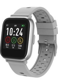Smartwatch Denver SW-161 Szary (116111000180). Rodzaj zegarka: smartwatch. Kolor: szary