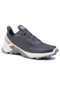 Szare buty do biegania salomon Gore-Tex, z cholewką