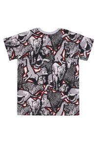 Kenzo kids - KENZO KIDS - Koszulka z grafiką Jungle 4-14 lat. Kolor: szary. Materiał: bawełna, prążkowany. Wzór: motyw zwierzęcy, aplikacja, nadruk. Sezon: lato. Styl: klasyczny