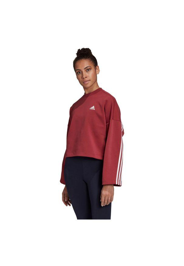 Adidas - Bluza damska adidas 3-Stripes Doubleknit GC6944. Materiał: skóra, dzianina, poliester, materiał. Wzór: paski, ze splotem. Sport: fitness