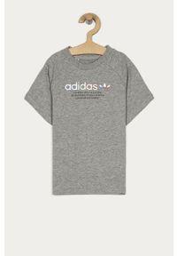Szary t-shirt adidas Originals na co dzień, z nadrukiem