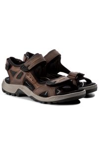 Brązowe sandały trekkingowe ecco na lato