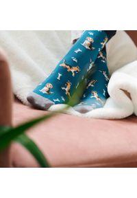 More - Niebieskie skarpety męskie w psy, dogs SK254. Kolor: niebieski. Materiał: bawełna, poliamid, elastan