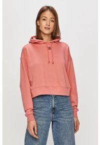 Różowa bluza adidas Originals długa, z długim rękawem