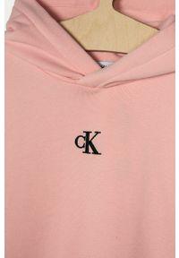 Różowa sukienka Calvin Klein Jeans z kapturem, prosta, gładkie, z krótkim rękawem