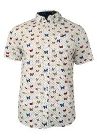 Wielokolorowa koszula casual Brave Soul z krótkim rękawem, na co dzień