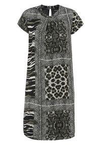 Sukienka w animalistyczny deseń bonprix czarno-beżowy w paski zebry. Kolor: zielony. Wzór: motyw zwierzęcy, paski. Typ sukienki: proste