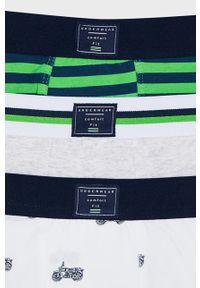 Zielone majtki Mayoral