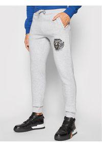 Togoshi Spodnie dresowe Wildcat Sp M 2 Szary Regular Fit. Kolor: szary. Materiał: dresówka