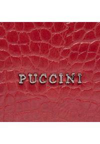 Czerwona listonoszka Puccini