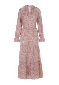 Born2be - Ciemnoróżowa Sukienka Adrasixie. Kolor: różowy. Długość rękawa: długi rękaw. Wzór: aplikacja. Styl: boho. Długość: maxi