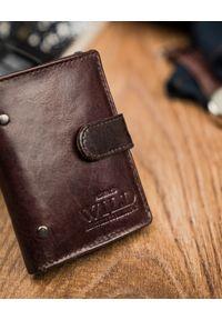 ALWAYS WILD - Portfel męski brązowy Always Wild N9001L-VTK-N BROWN. Kolor: brązowy. Materiał: skóra
