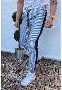 IVET - Spodnie męskie VOLTER NAVY. Okazja: na co dzień. Kolor: biały, wielokolorowy, niebieski. Materiał: jeans. Styl: casual