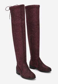 Renee - Bordowo-Czerwone Kozaki Chace. Wysokość cholewki: przed kolano. Nosek buta: okrągły. Zapięcie: zamek. Kolor: czerwony. Materiał: materiał. Szerokość cholewki: normalna. Obcas: na obcasie. Wysokość obcasa: niski