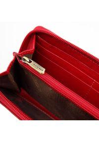 Wittchen - Damski portfel skórzany stylowy na zamek. Kolor: czerwony. Materiał: skóra