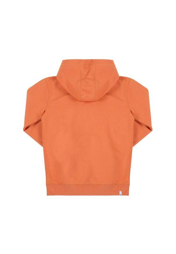 Pomarańczowa bluza Quiksilver