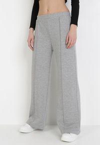 Szare spodnie materiałowe Born2be