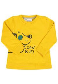 Żółta bluza Primigi
