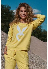 Cardio Bunny - Bluza bawełniana POPPY. Okazja: na co dzień. Kolor: żółty. Materiał: bawełna. Długość rękawa: długi rękaw. Długość: długie. Wzór: nadruk. Styl: casual