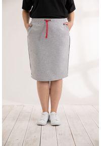 Szara spódnica Moda Size Plus Iwanek klasyczna, na wiosnę, gładkie