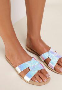 Renee - Srebrne Klapki Diosiphelia. Nosek buta: okrągły. Kolor: srebrny. Materiał: jeans, lakier. Sezon: lato. Obcas: na obcasie. Wysokość obcasa: niski