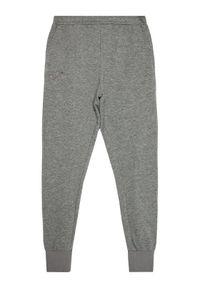 Joma Spodnie dresowe Pireo 100891.280 Szary Regular Fit. Kolor: szary. Materiał: dresówka