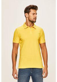 Żółta koszulka polo s.Oliver krótka, polo, casualowa