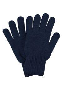 Niebieskie rękawiczki Pako Jeans na jesień, eleganckie