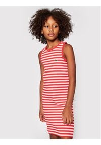 Lacoste Sukienka codzienna EJ0258 Pomarańczowy Regular Fit. Okazja: na co dzień. Kolor: pomarańczowy. Typ sukienki: proste. Styl: casual