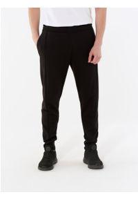 outhorn - Spodnie dresowe męskie. Materiał: dresówka. Wzór: aplikacja